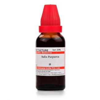 Medicines Mall - Willmar Schwabe India Salix Purpurea (Q) (30 ML) Mother Tinctures / MT